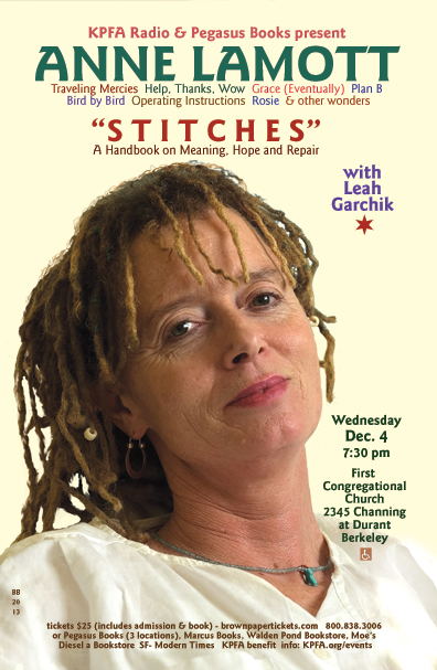 Stitches | Anne Lamott